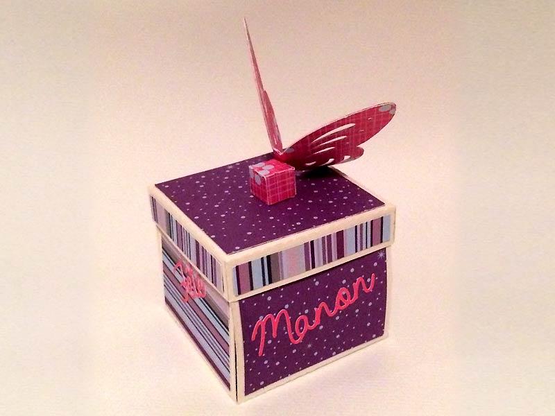 boite explosion box scrapbooking papier diy silhouette portrait cameo butterfly papillon