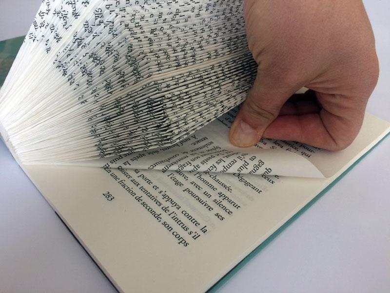 Fabriquer Un Hérisson Porte Papiers Photos Avec Un Vieux Livre