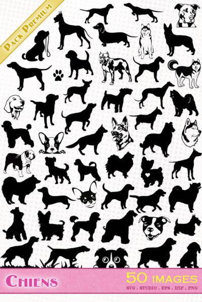 chien fichier vectoriel svg eps silhouette dxf cameo portrait scanncut cricut labrador chiwawa berger allemand pitbull american staff colley caniche boxer