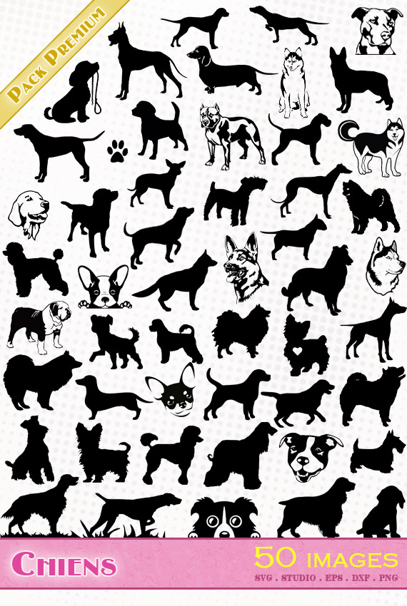 Chiens – 50 images svg/studio/png/dxf/eps