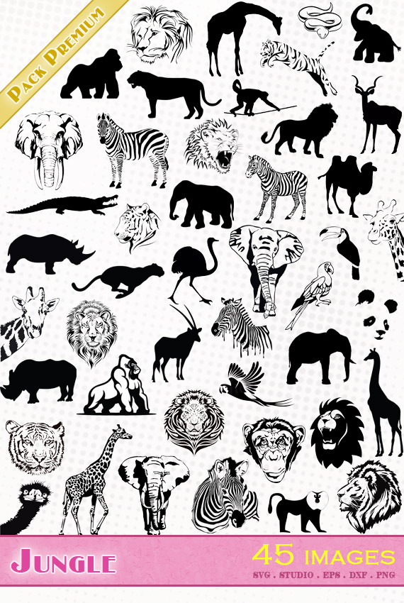 Animaux de la jungle – 45 images svg/studio/png/dxf/eps