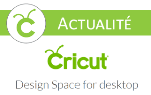 cricut design space for windows offline déconnecté hors ligne