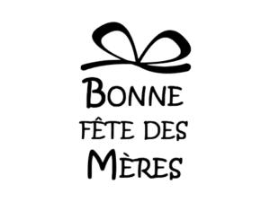 fête des mère bonne fête maman svg sst silhouette studio caméo portrait cricut maker joy explore fichier gratuit free