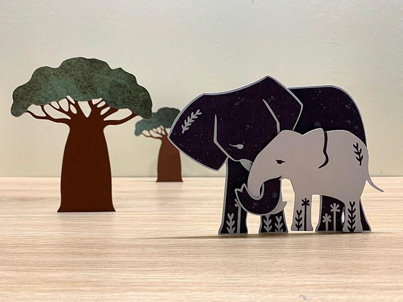 éléphant éléphanteau baobab